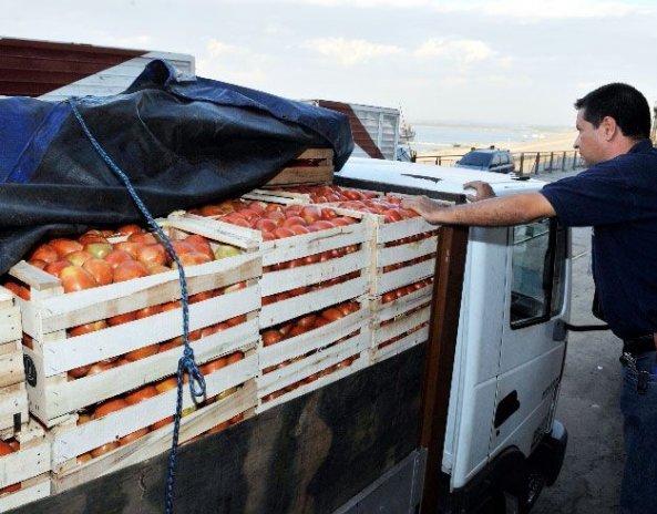 el-cargamento-de-tomate-y-locote-que-fue-decomisado-por-detave-sobre-ruta-i-entre-carapegua-y-paraguari-_593_464_132781